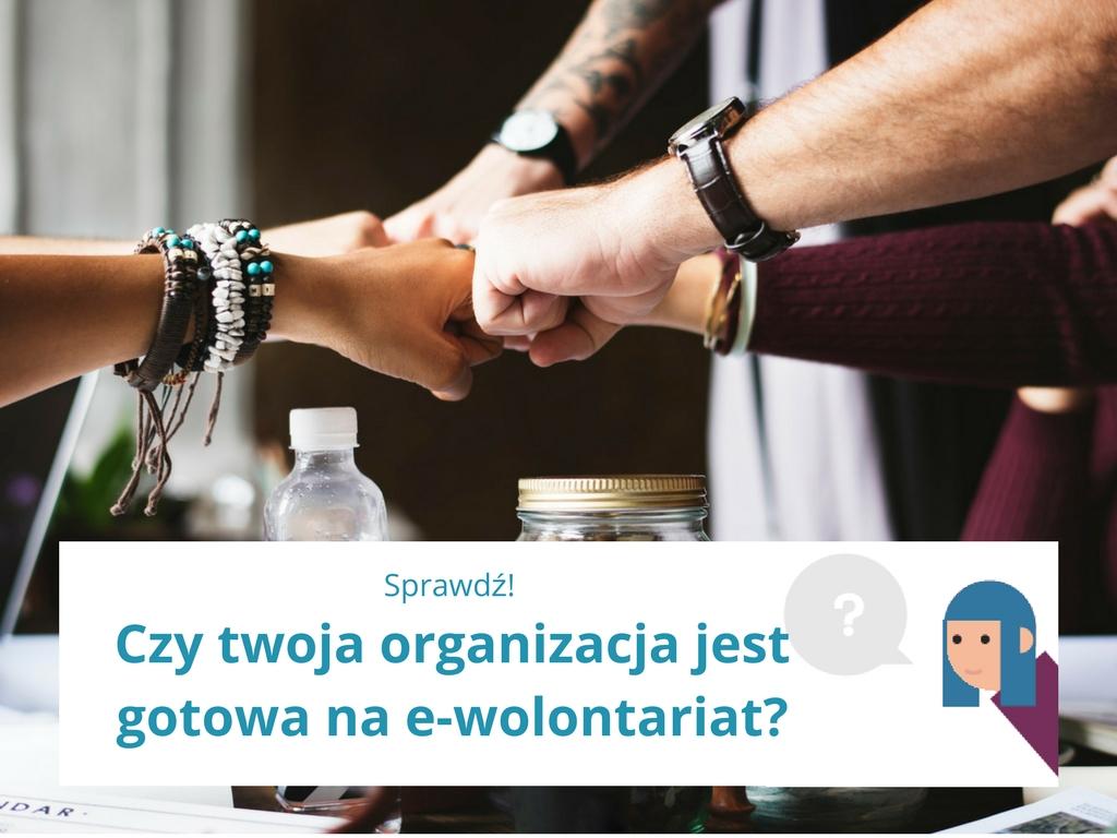 Czy twoja organizacja jest gotowa na e-wolontariat? Sprawdź!