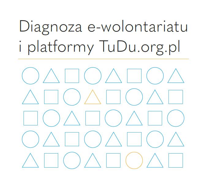 Okladka diagnoza e-wolontariatu